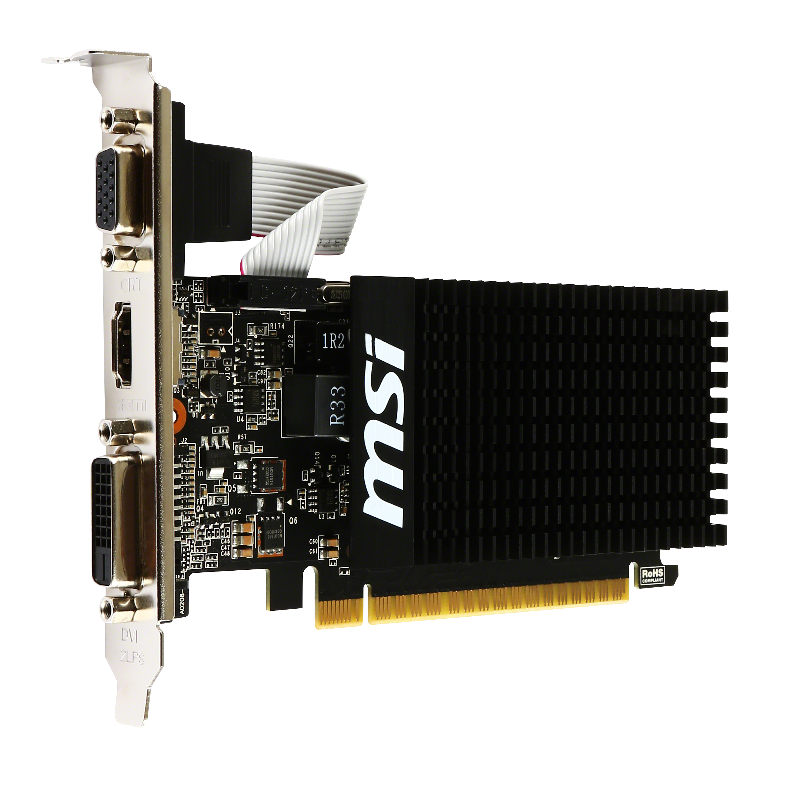 MSICV025445