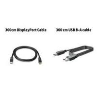 HP 300cm DP & USB B-A Cable 3m DisplayPort DisplayPort Black