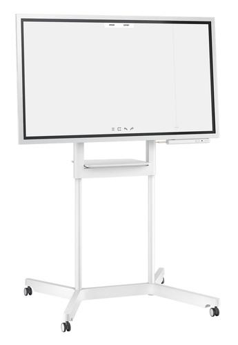 Monitor Profesional