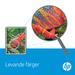 HP 203X magenta XL