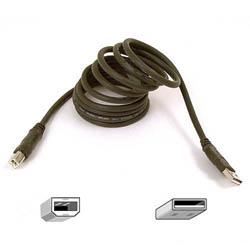 Belkin Cable A>B 1.8m ext USB Bulk