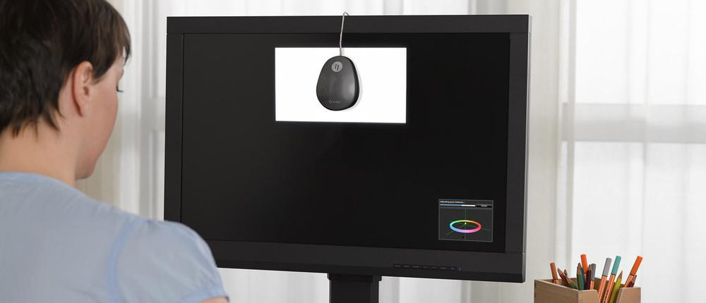 Calibrazione professionale con EIZO ColorNavigator