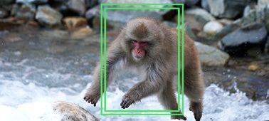 Geliştirilmiş fotoğraf fırsatları için Kilitlenen AF özelliği