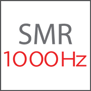 Super Motion Rate (SMR 1000 Hertz)