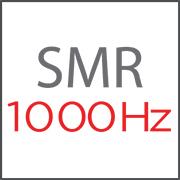 Super Motion Rate (SMR 1000 Hertz)