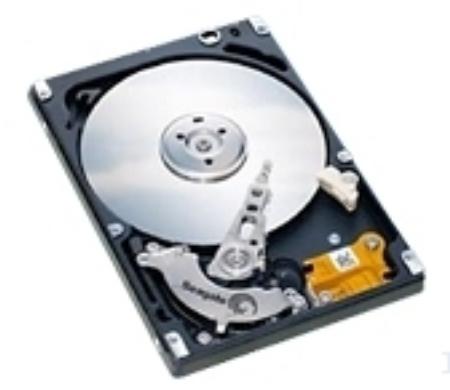 Seagate Momentus 80GB HDD 80GB Ultra-ATA/100 disco rigido interno