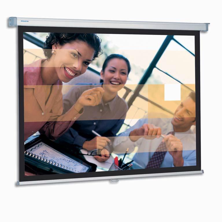 Projecta SlimScreen 180x180 Matte White S 1:1 schermo per proiettore