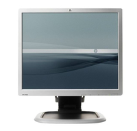 "HP L1950 19"" TFT Opaco Argento monitor piatto per PC"