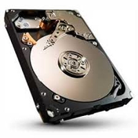 Lenovo FRU04W1341 320GB SATA disco rigido interno