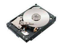 Lenovo FRU41W0075 80GB SATA disco rigido interno