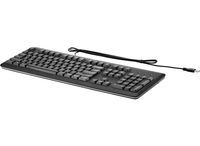 HP USB Standard Black US EN keyboard QWERTY US English