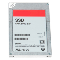 DELL Serial ATA Solid State Hard Drive - 256 GB Seriale ATA II