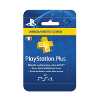 Sony PlayStation Plus Card : 365 Multicolore smart card