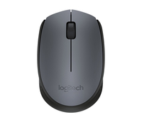 Logitech M170 Wireless  + USB Ambidestro Grigio mouse