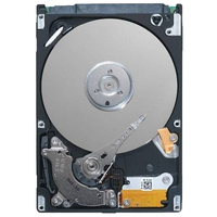 DELL 1TB NL-SAS 1000GB SAS disco rigido interno