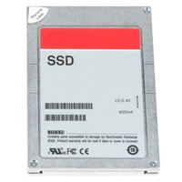 "DELL 400-ARPK 480GB 2.5"" Serial ATA III drives allo stato solido"