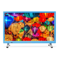 "MEDION LIFE P13500 21.5"" Full HD Blu, Argento LED TV"