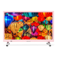 "MEDION LIFE P13500 21.5"" Full HD Rosa, Argento LED TV"