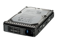 Iomega StorCenter 34711 1000GB Seriale ATA II disco rigido interno
