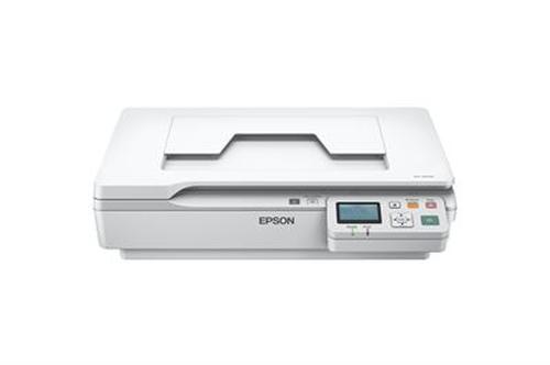 Epson WorkForce DS-5500N Flatbed scanner 1200 x 1200DPI A4 White