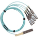 Networking 200gbe Qsfp28-dd To 2x100gbe Qsfp28 Active Optical Cablebreakout No Fec 5 Mete