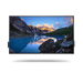 Monitor -  Interactive Touch - Supp 65 4k Mon-c6522qt