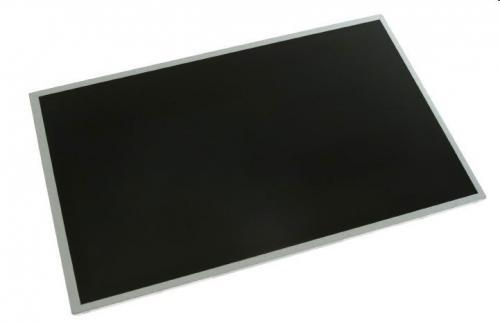 HP 313071-010 Dsplay ricambio per notebook