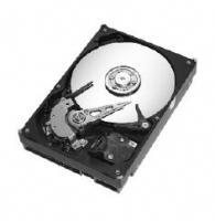 Seagate Desktop HDD BARRACUDA 7200.8 300GB 300GB SATA disco rigido interno