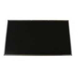 Toshiba H000043310 Display ricambio per notebook