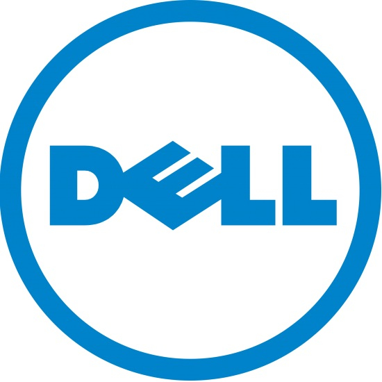 DELL 385-11064 memoria flash