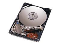 Lenovo HD 40GB ATA100 EIDE SL 7200rpm f TC 40GB Ultra-ATA/100 disco rigido interno