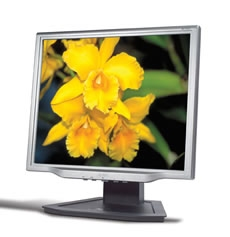 """Acer AL1723 17"""" monitor piatto per PC"""
