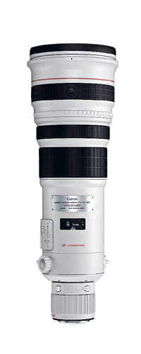 Canon EF 500mm f/4.0L IS USM Argento
