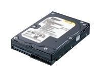 Buffalo Replacement 400GB Drive for DriveStation Duo 800MB 400GB SATA disco rigido interno