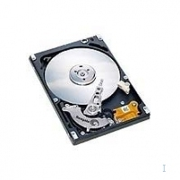 Acer 100GB Hard Disk 100GB disco rigido interno