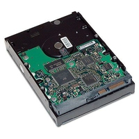 HP 1TB, SATA, 3.0G, NCQ, 7200 rpm 1024GB Seriale ATA II disco rigido interno