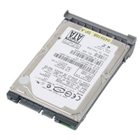 DELL 80GB SATA Hard Drive 80GB SATA disco rigido interno