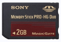 Sony MSEX2G 2GB memoria flash