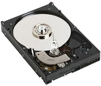 "DELL 1TB 2.5"" SATA 1000GB Seriale ATA II disco rigido interno"