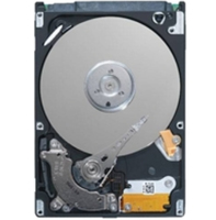 "DELL 1TB 3.5"" SATA 1000GB Seriale ATA II disco rigido interno"