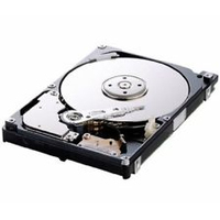 DELL 400-19467 300GB SAS disco rigido interno