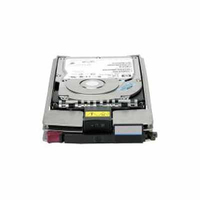 HP StorgeWorks EVA 1TB FATA Add on Hard Disk Drive 1000GB Canale a fibra disco rigido interno