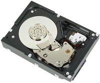 "DELL 3TB SAS 7.2k 3.5"" 3000GB SAS disco rigido interno"