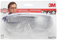 3M VISITOR Trasparente safety goggles/glasses