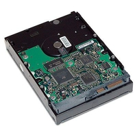 HP 500GB, SATA, 3G, NCQ, 7200 rpm 500GB Seriale ATA II disco rigido interno