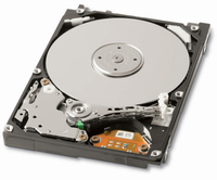 Toshiba HDD 320GB SATA II 320GB Seriale ATA II disco rigido interno