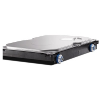 HP 1TB SATA (NCQ/Smart IV) 3.0Gb/s 1000GB Seriale ATA II disco rigido interno