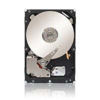 DELL 300GB Ultra320 300GB SCSI disco rigido interno