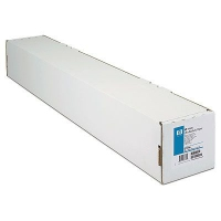 HP Matte Litho-realistic 610 mm x 30.5 m (24 in x 100 ft)