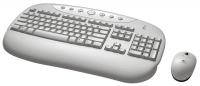 Logitech 967468-0102 RF Wireless QWERTY tastiera